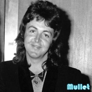 Paul-McCartney-Mullet
